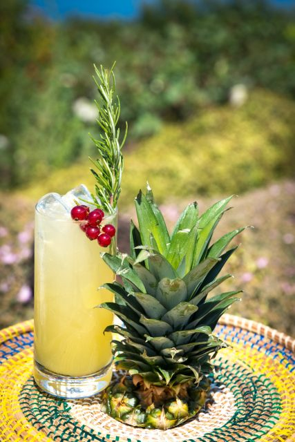 cocktail-raffo-10