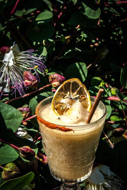cocktail-raffo-14