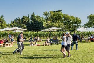 Festival d'Estate in Franciacorta: 5 diapositive da non dimenticare