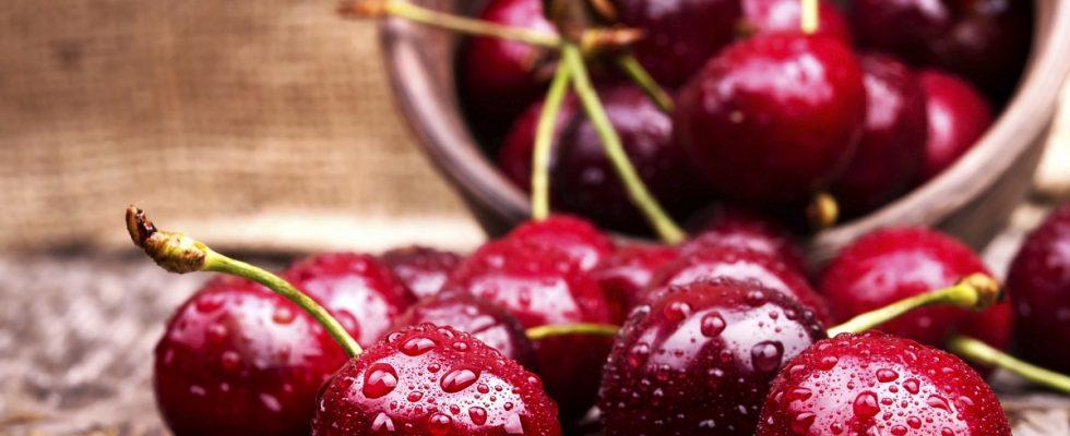 30 dolci con ciliegie, le ricette da provare