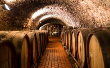 Portogallo: i vini che non ti aspetti
