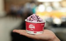 E voi lo mangereste il gelato agli insetti?