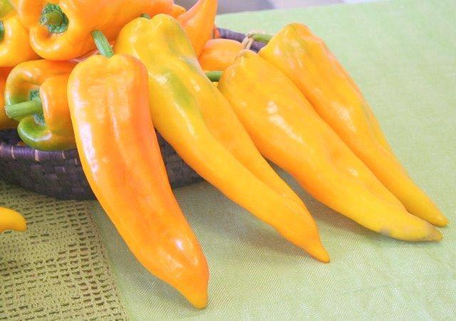 peperone-corno-giallo