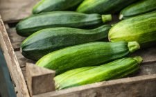 Zucchine: le migliori ricette per l'estate