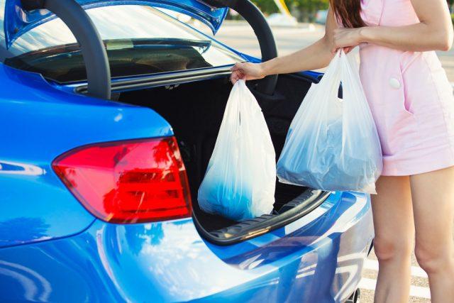 spesa in macchina