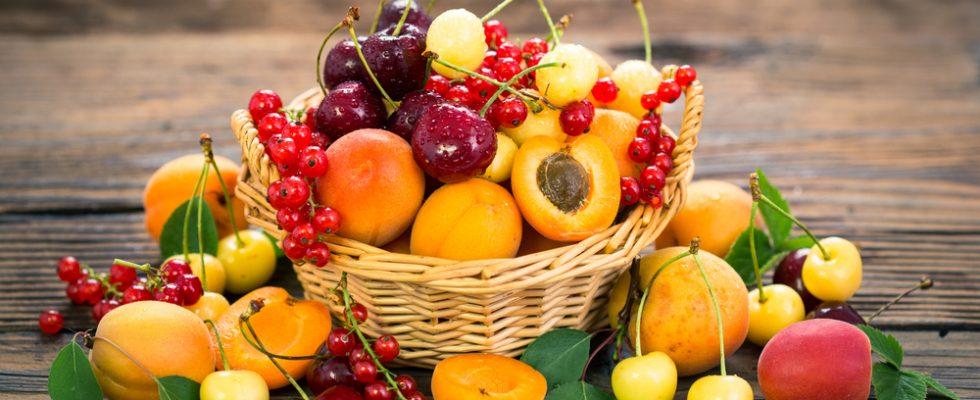 Tips: come conservare al meglio frutta e verdura in estate
