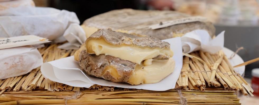 12 eventi da non perdere a Cheese 2017