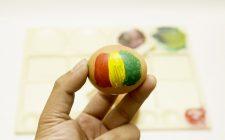 Jamaica: 23 piatti obbligatori