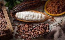 E voi sapete come si usa la grue di cacao?