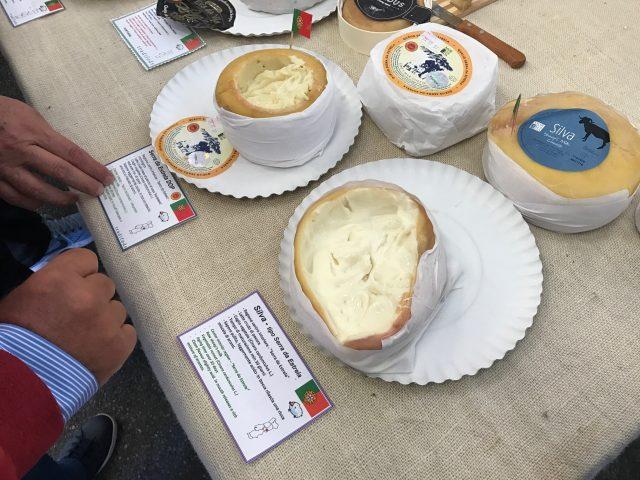 serra da estrela dop cheese