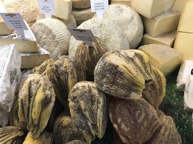 ostrica di montagna cheese