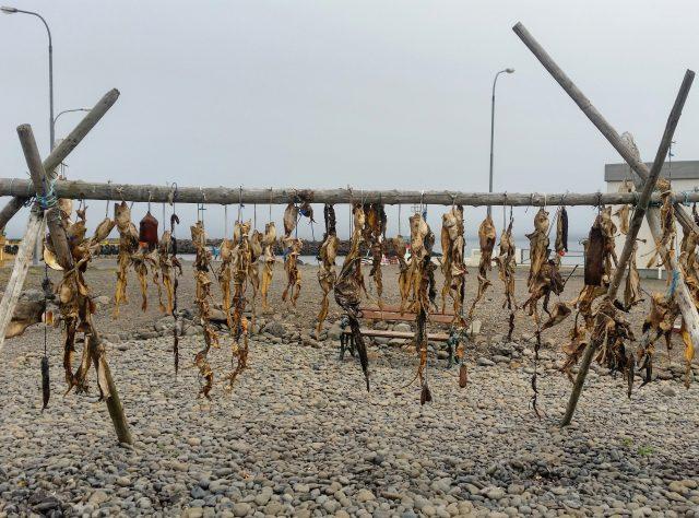pesce-essiccato