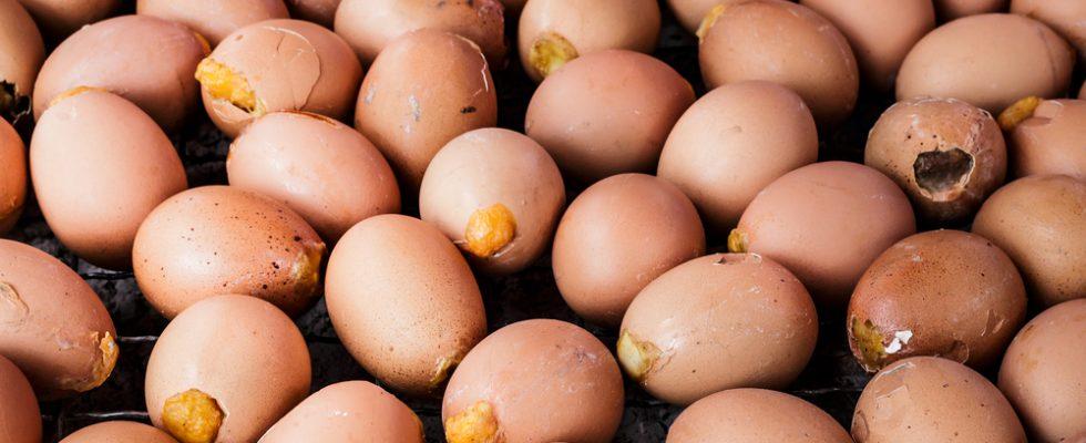 Ritirate uova per possibile contaminazione