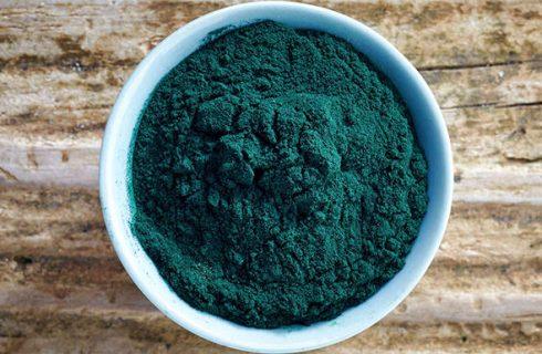 Oristano diventerà il maggior produttore italiano di alga spirulina
