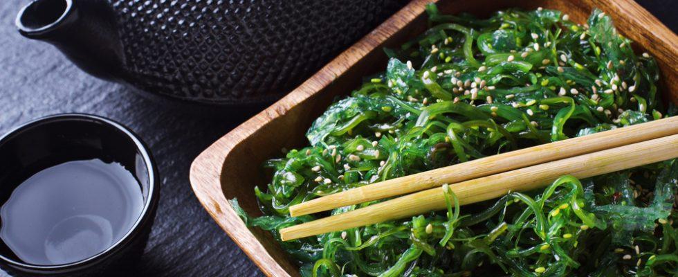 Insalata giapponese: l'alga Wakame