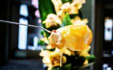 Nu Ovo a Firenze: solo uova