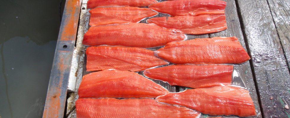 Fare di necessità virtù: mangiare e cucinare in Alaska
