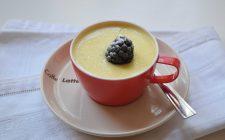 crema-allo-yogurt-classica-con-bimby-a1474
