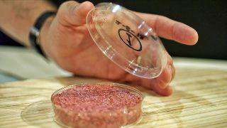 Il cibo del futuro parte dalla Clean Meat