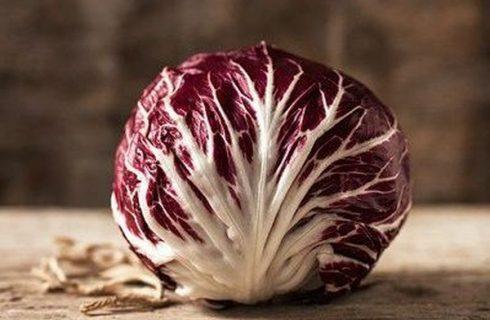 Radicchio di Chioggia: cos'è e come usarlo in cucina