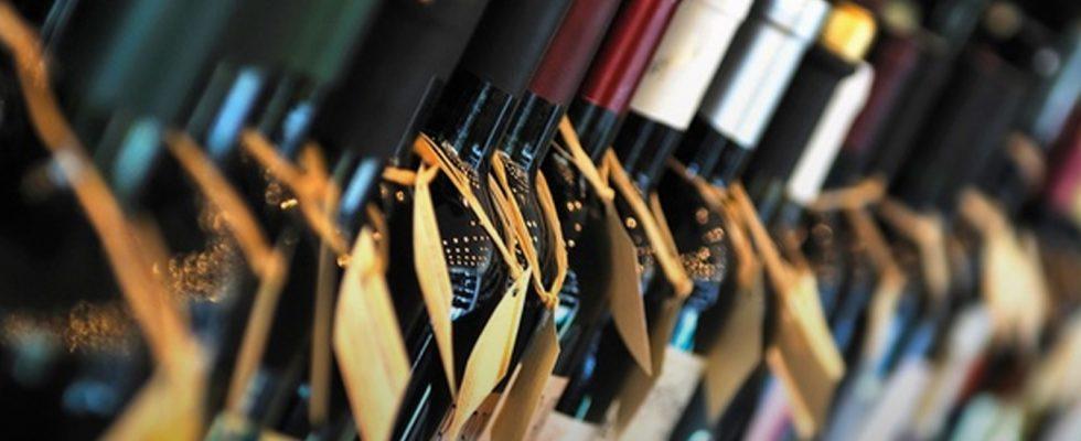 5 vini che dovreste assaggiare secondo il Gambero Rosso
