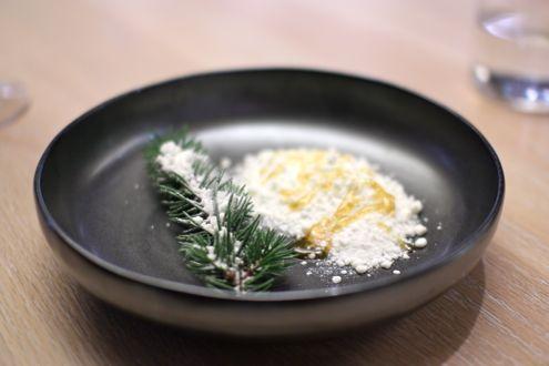 yogurt-pine-snow