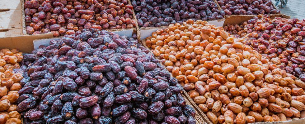I 99 datteri di Tozeur, un viaggio nell'oasi tunisina delle palme da frutto