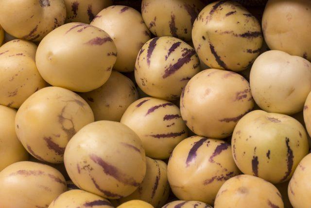 pepino-peruviano