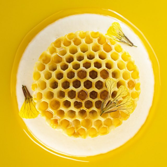 migoya-honey-comb