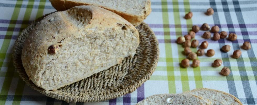 Pagnotta di nocciole, pane autunnale con il bimby