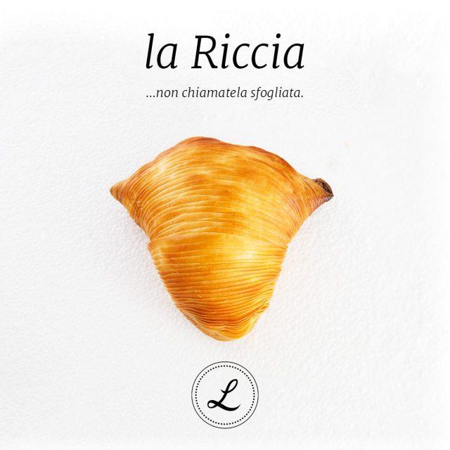 sfogliatella_riccia-2