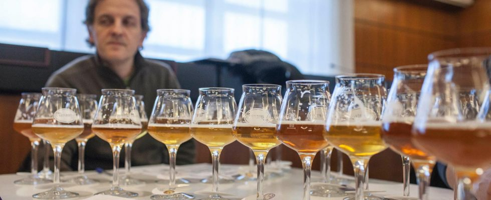 Rimini: a Beer Attraction per eleggere la Birra dell'Anno 2018