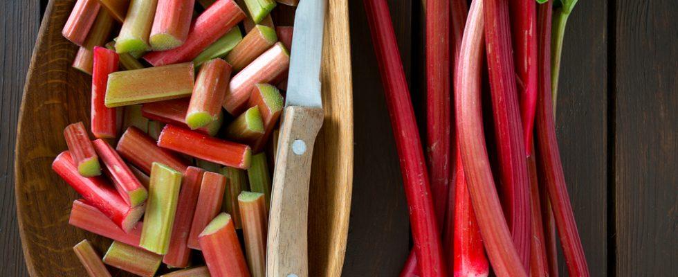 Rabarbaro: 8 idee per cucinarlo