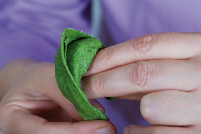 tortelli-verdi-vegani-a1754-19