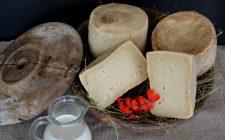 11 formaggi da non perdere in Trentino