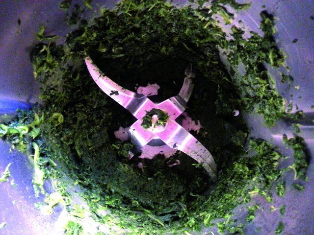gnocchi-agli-spinaci-con-fonduta-di-fontina-a885-7