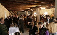 Appuntamenti vino: in Trentino per Summa