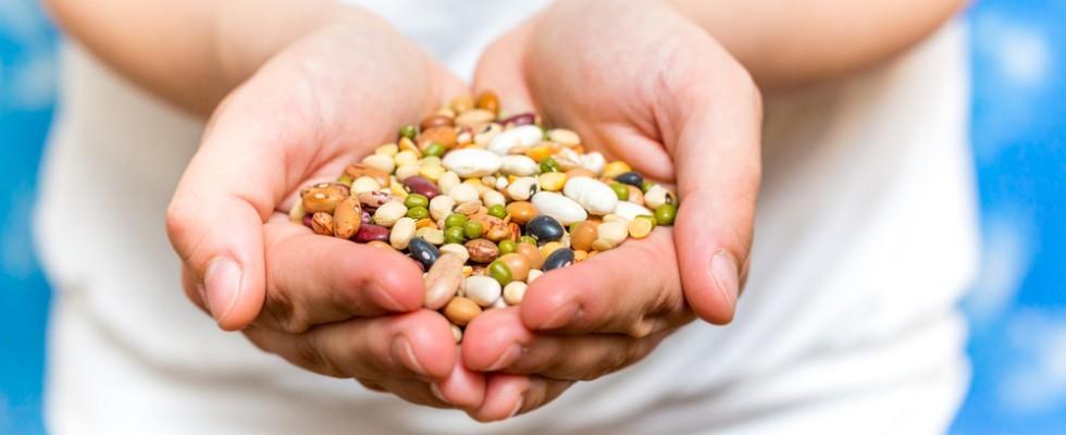 migliori ricette vegane crude a basso contenuto di grassi