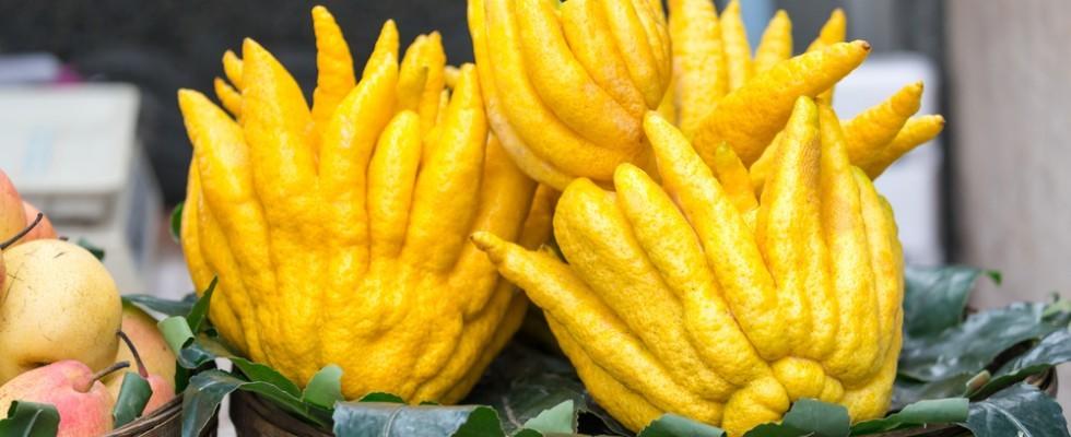 7 agrumi che ancora non conoscevi e come usarli in cucina