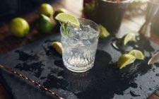 Soffrite d'asma o rinite allergica? Bevete un gin tonic