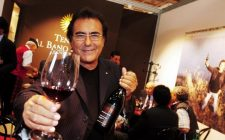 13 musicisti prestati al mondo del vino
