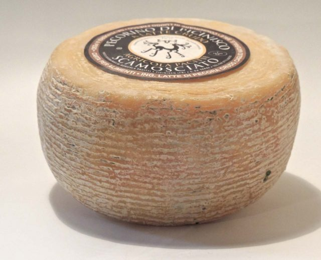 pecorino-di-picinisco