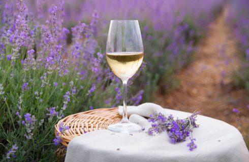 Mangiare in Provenza: i migliori locali tra Arles, Aix en Provence e dintorni