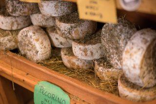 Formaggi nostrani: i 10 migliori pecorini d'Italia