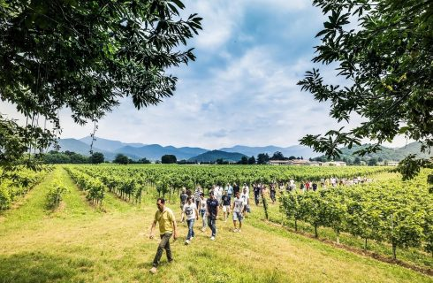 Franciacorta Summer Festival 2018, un mese per brindare all'arrivo dell'estate