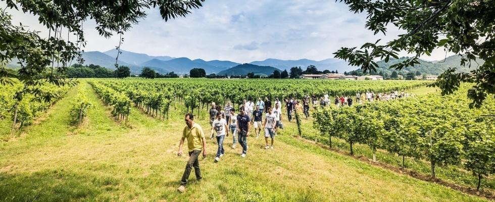 Franciacorta Summer Festival 2018, un mese per brindare all'arrivo dell'estate