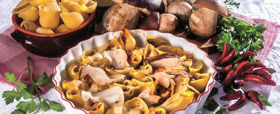 Conchiglioni con zucca, funghi e besciamella, un primo piatto ripieno di autunno