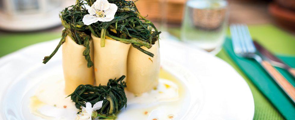 Paccheroni con asparagi di bosco, stracchino e riccioli di agretti: una finta pasta al forno veloce