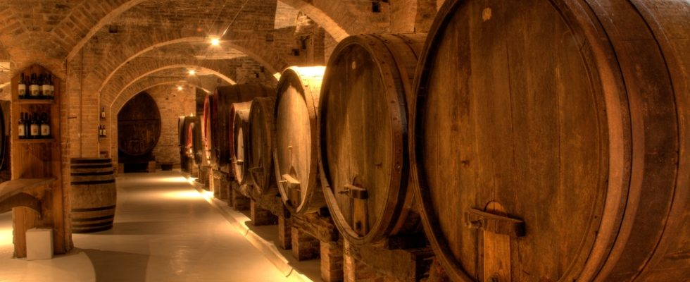 Per appassionati di vino: il 26 e 27 maggio c'è Cantine Aperte