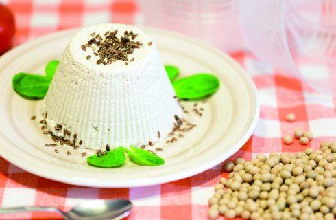 Tofu fatto in casa: cucina vegana